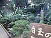 Syokubutuen4
