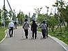 Midorimori20160520nw_019